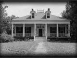 Plantation Home Plans Elegant Single Story Antebellum Plantation Home