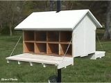 Purple Martin House Pole Plans and Three Houses Should Have Easy Access to the Interior