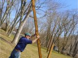 Purple Martin House Pole Plans Growing In Grace Purple Martin House On Swivel Pole