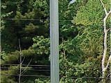 Purple Martin House Pole Plans T 14 Purple Martin House Aluminum Pole No Rot Safer Than
