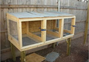 Quail Housing Plans 214 Best Images About Tiny button Quail Care Housing On