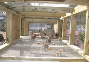 Quail Housing Plans 80 Best Images About Quail On Pinterest Chicken Coop