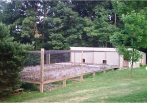Quail Housing Plans top 25 Ideas About Quail On Pinterest Raising Ducks and