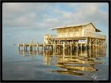 River House Plans On Stilts Stilt Homes On the Gulf Of Mexico Pictures River House On
