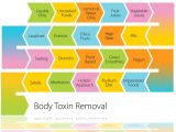 Simple Home Detox Plan 7 Ways to Detox Your Body Fitnea Stay Fit