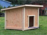 Simple Large Dog House Plans Large Dog House Plan 2 9 99 Picclick