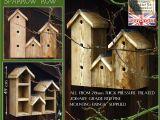 Sparrow Bird House Plans Sparrow Row Bird Box Birdbx Spar Bird Boxes by Granddad