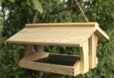 Squirrel Proof Bird House Plans Bird Feeder Plans Squirrel Proof Wartosciowestrony top
