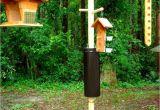 Squirrel Proof Bird House Plans Bird Feeders Squirrel Proof Bird Feeders Pinterest