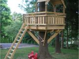 Swing Set Tree House Plans 21 Best Images About Tree House Fun On Pinterest A Tree