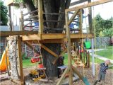 Swing Set Tree House Plans Swing Set with Tree House Plans House Design Plans