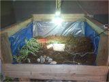 Tortoise House Plans House Plans tortoise House Plans Inspirational 40 Quot Lx40