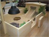 Tortoise House Plans Indoor tortoise House Plans House Design Plans