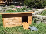 Tortoise House Plans Pin tortoise House Plans Image Search Results On Pinterest