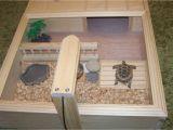Tortoise House Plans Sulcata tortoise Table
