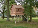 Tree Home Plans 17 Fun Looking Tree House On Stilts Ideas