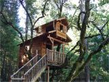 Tree House Plans for Sale Building Your Own Tree House How to Build A House