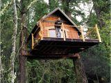 Tree House Plans for Sale Goat island Tree House Partners Turn to Kickstarter to