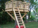 Tree House Plans for Sale Tree fort Ladder Gate Roof Finale Village Custom