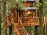 Tree House Plans for Sale Tree House Plus normal One for Sale In Woodinville