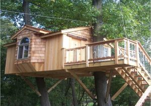 Tree Houses Plans and Designs Outdoor Awesome Treehouse Plans and Designs Treehouse