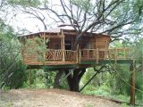 Tree Houses Plans and Designs Pictures Of Tree Houses and Play Houses From Around the