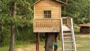 Tree Houses Plans and Designs Simple Tree House Design Plans Easy to Build Tree House