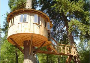 Tree Houses Plans and Designs Tree House Designs and Plans Margusriga Baby Party
