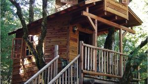 Treehouse House Plans 18 Amazing Tree House Designs Mostbeautifulthings