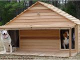 Two Dog Dog House Plans Diy Dog Houses Dog House Plans Aussiedoodle and