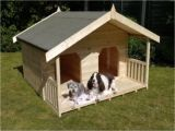 Two Story Dog House Plans Unique Two Story Dog House Dogs World