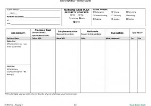 Veterinary Home Care Plan Template Image Result For Blank Nursing