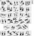 Weight Lifting Plan for Beginners at Home Weight Lifting Chart for Beginners Workout Chart Home