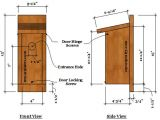 Western Bluebird House Plans Bluebird Birdhouse Plans Complete Step by Step