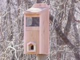 Winter Bird House Plans Best 28 Roosting Box Plans Winter Bird Shelter and