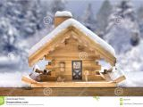 Winter Bird House Plans Wood Project Ideas Useful Winter Bird House Plans