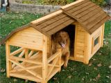 Winter Dog House Plans Dog House Designs with Creative Plans Homestylediary Com