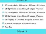 Work Out Plans at Home to Lose Weight Level One Exercise Plan to Insanity Back