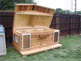 X Large Dog House Plans Your Big Friend Needs A Large Dog House Mybktouch Com